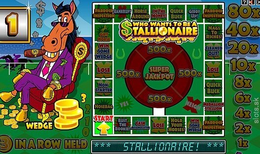 Who Wants to Be a Stallionaire